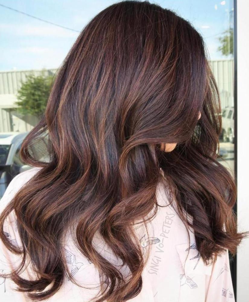 фото покраска коричневых волос щенок